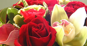 Roses and Orchids CBE Events Washington