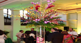 Floral-Display CBD Events Washington