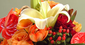Florals Lillies_CBD Events Washington